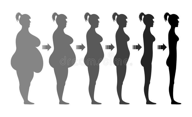 Arrangerar det kvinnliga diagramet för viktförlust vektor illustrationer