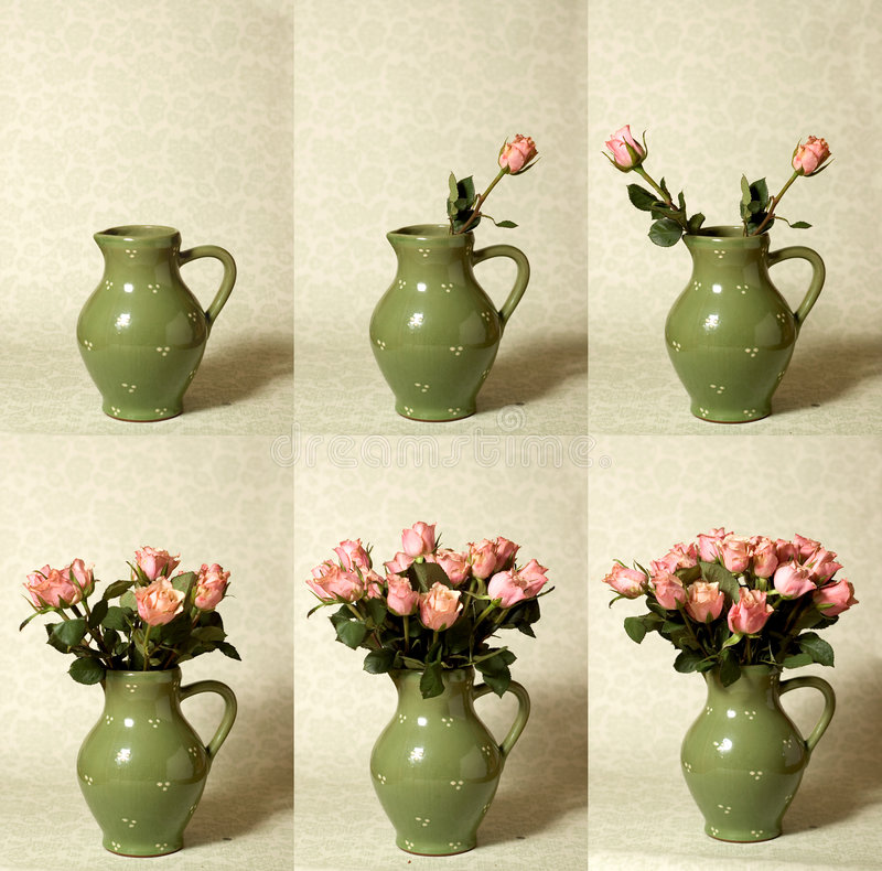 Arranging Flowers Sequence. Time lapse sequence compilation of 6 photo's, arranging roses in a vase vector illustration