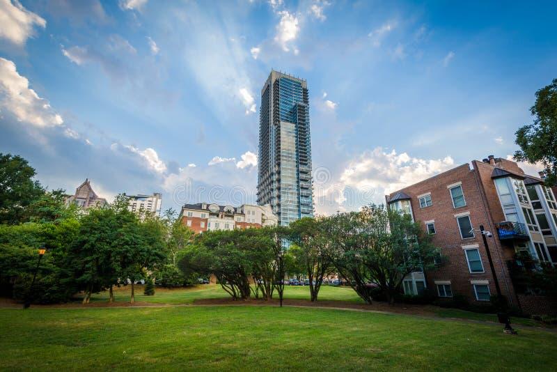 Arranha-céus moderno e quarto Ward Park, em Charlotte, Caro norte fotos de stock royalty free