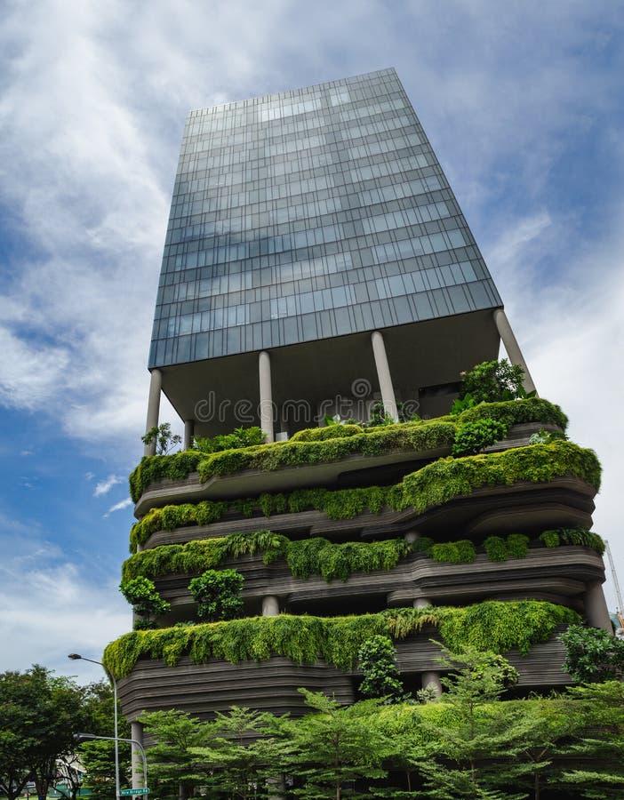 arranha-céus Planta-coberto, hortaliça-infundido de Singapura fotos de stock royalty free