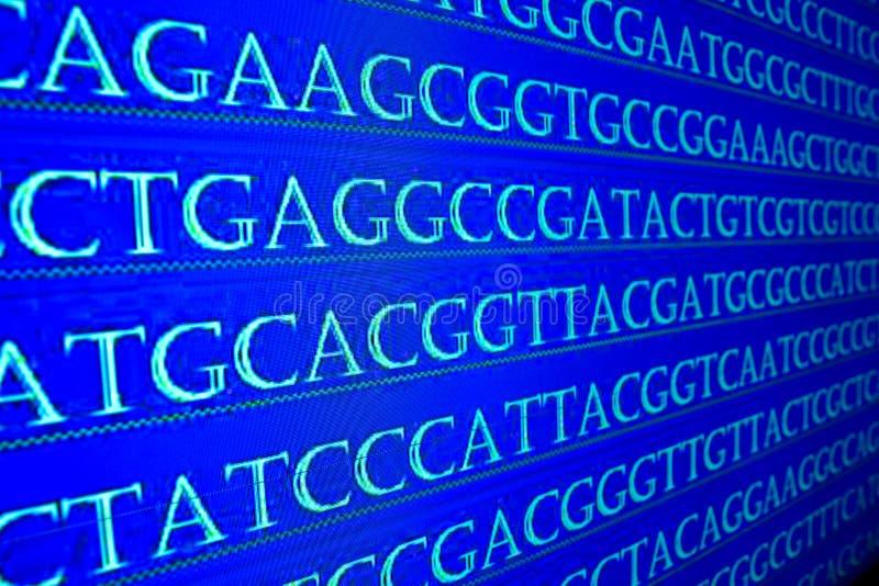 Arranjando em sequência o genoma fotos de stock royalty free