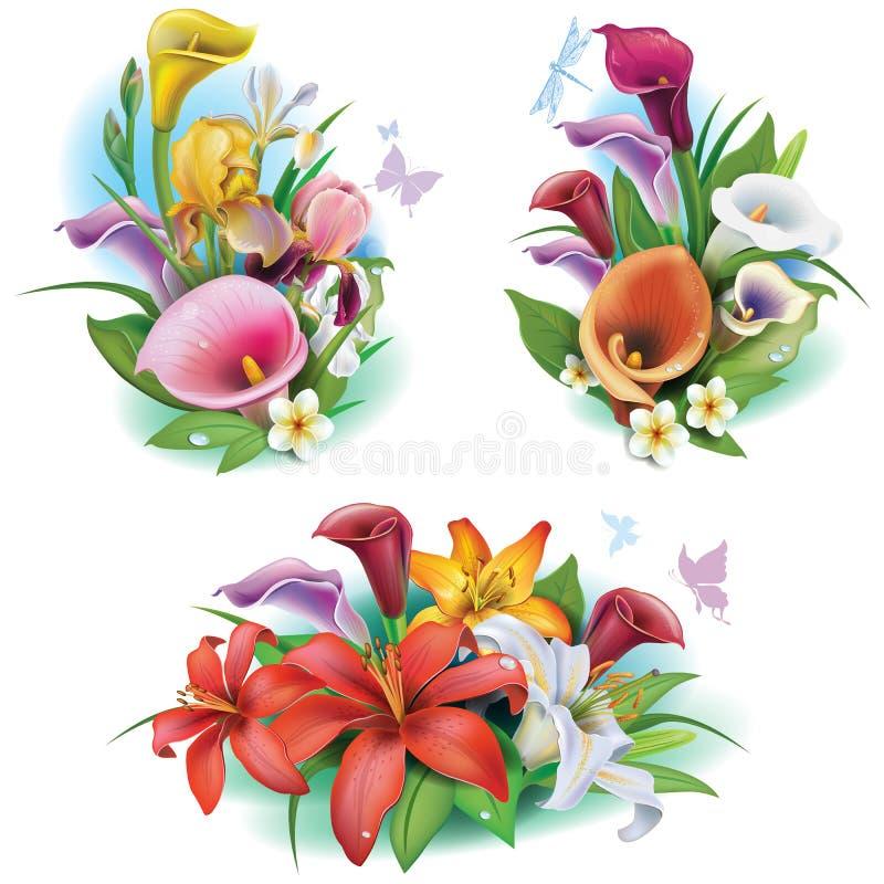 Arranjo das flores tropicais ilustração stock