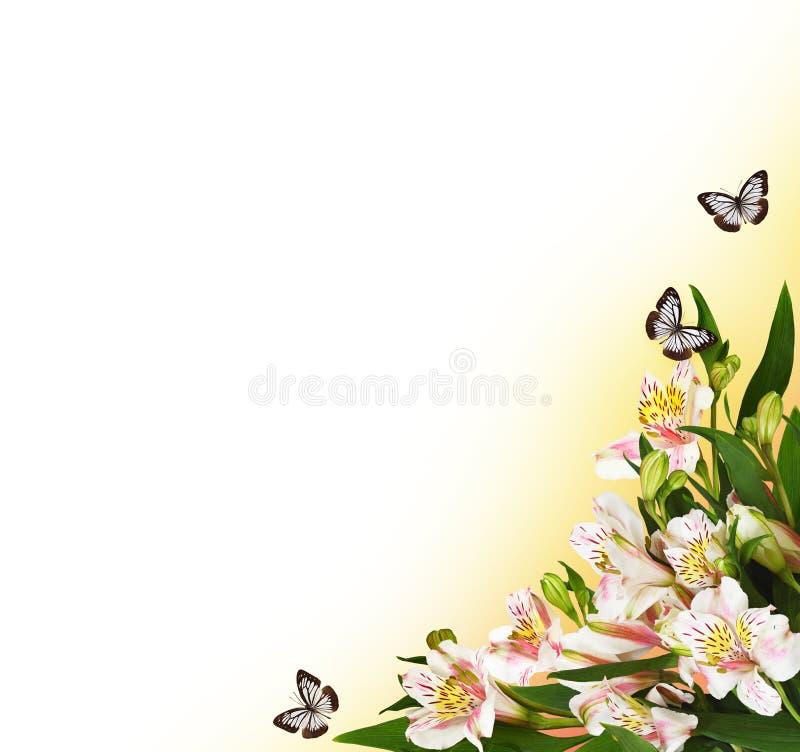 Arranjo de canto com flores e borboletas do alstroemeria imagens de stock