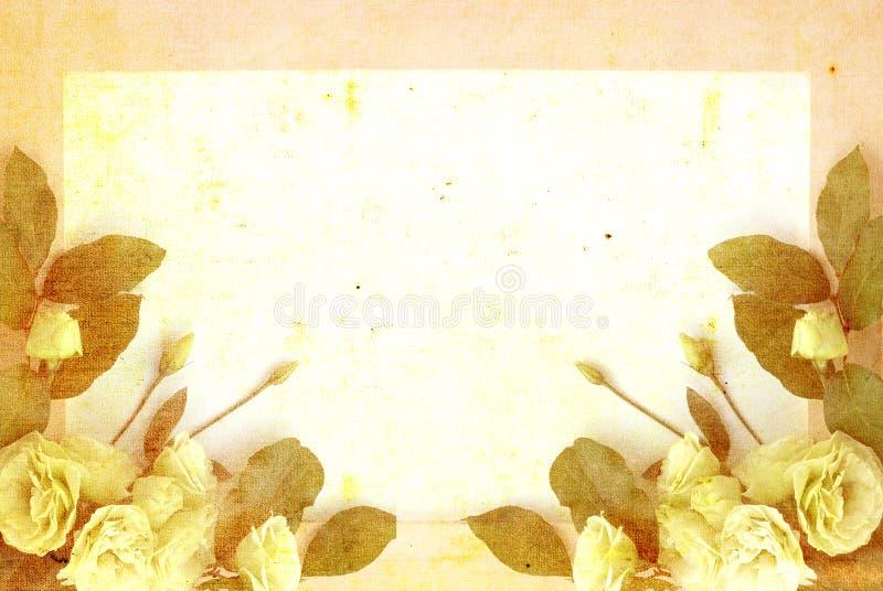 arranjo de flor em um fundo textured de creme foto de stock royalty free