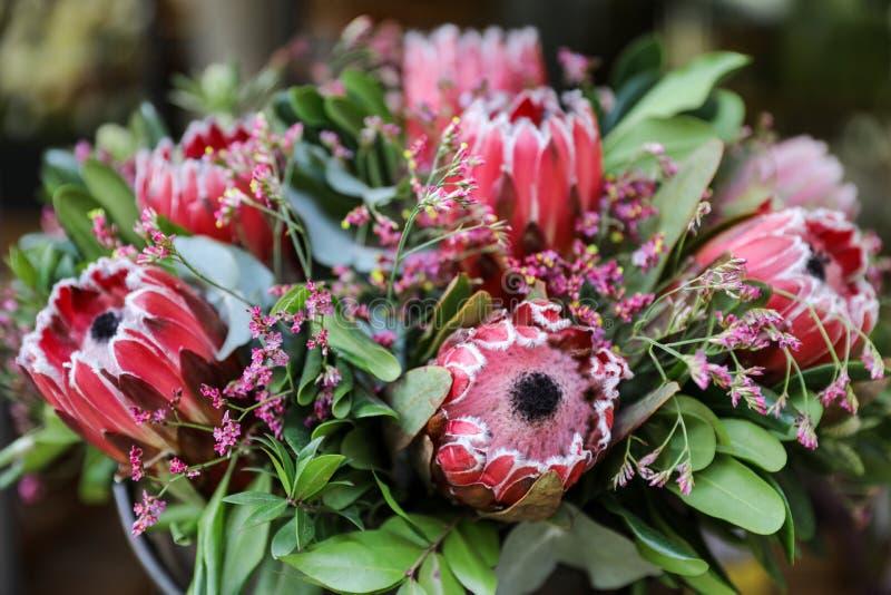 Arranjo de flor fresca bonito de flores do macrocephala do Protea fotografia de stock royalty free