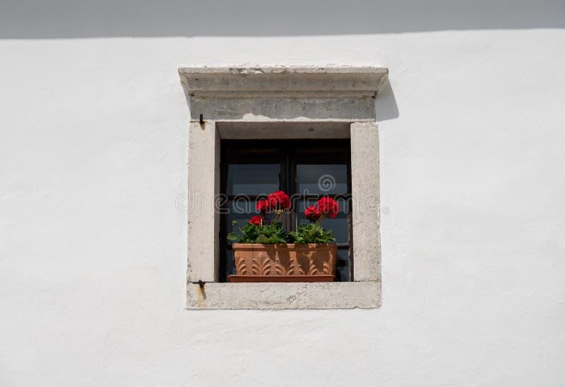 Arranjo de flor liso e simples na janela na parede de pedra fotos de stock