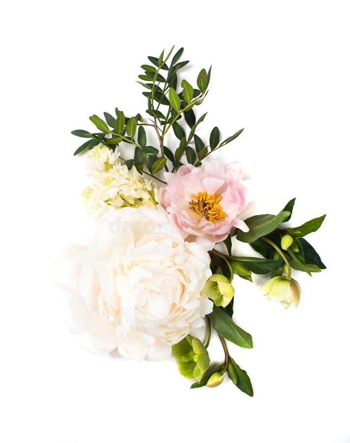 Arranjo de flores da peônia no fundo branco isolado festive imagens de stock