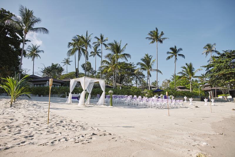 Arranjo do local de encontro do casamento de praia no beira-mar, arco, altar com fundo mínimo da decoração, da palmeira e do coco fotografia de stock