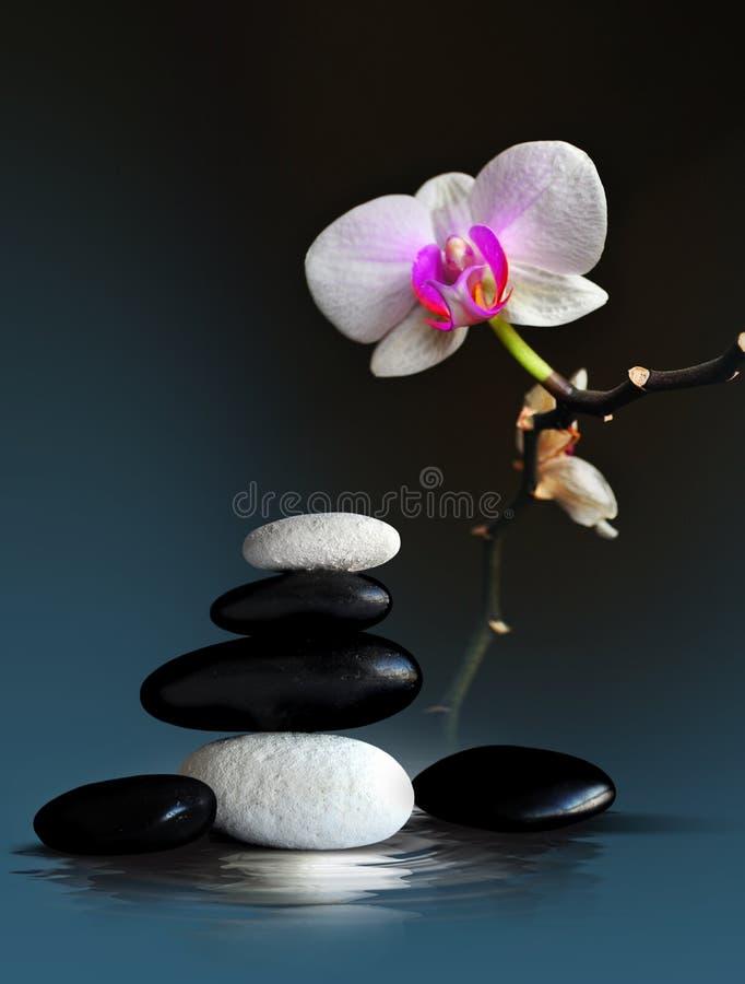 Arranjo do zen dos termas fotografia de stock royalty free
