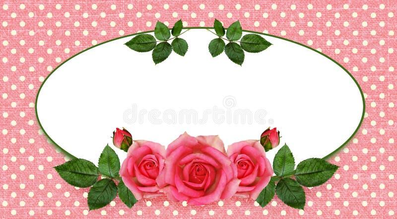 Arranjo e quadro de flores de Rosa ilustração stock