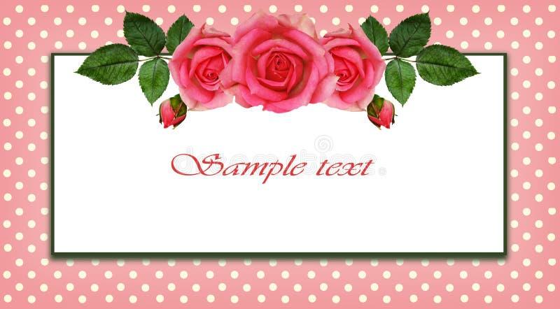 Arranjo e quadro de flores de Rosa ilustração royalty free