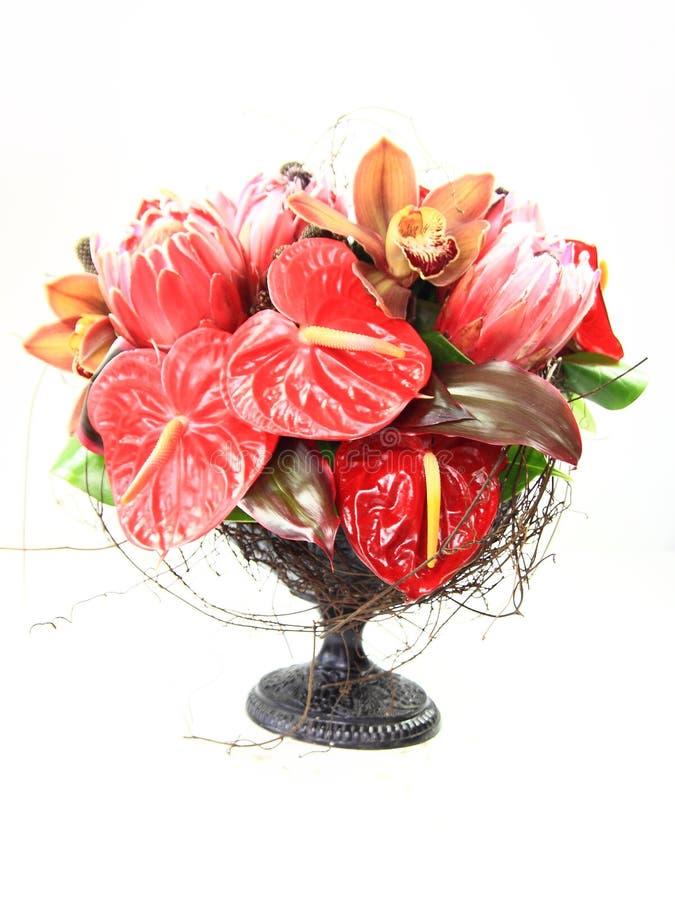 Arranjo floral fotografia de stock