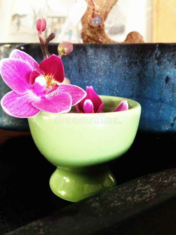 Arranjo floral da orquídea imagem de stock
