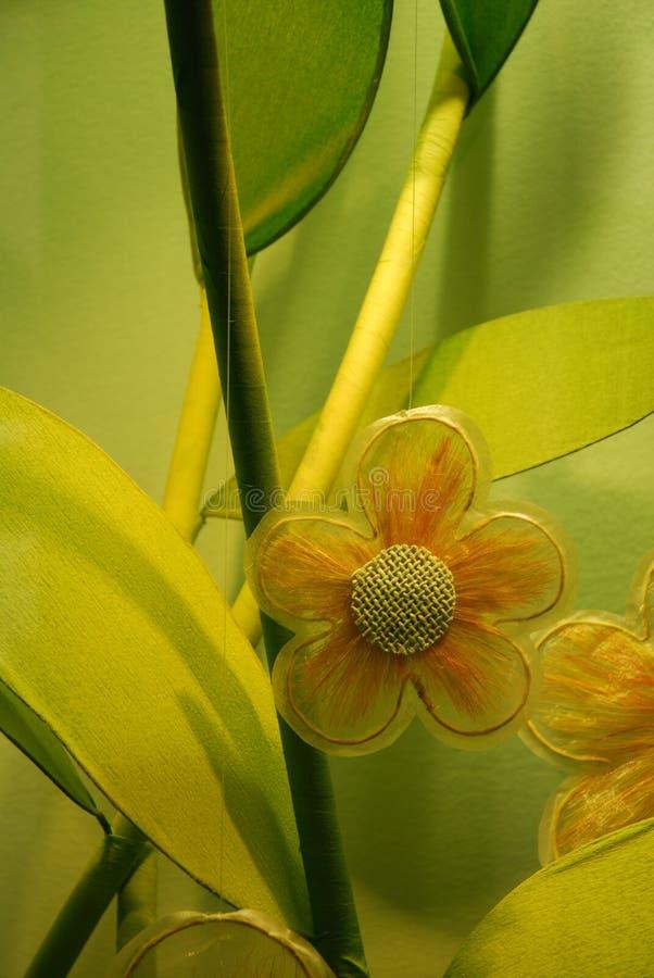 Arranjo floral verde fotos de stock