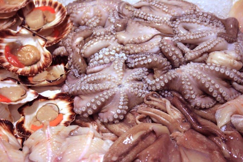 Arranjo fresco do marisco e do polvo no shopboard imagem de stock