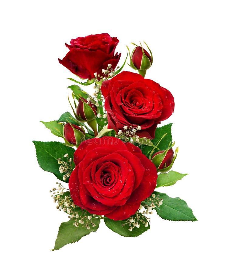 Arranjo romântico com rosas vermelhas e flores do gypsophila e b imagem de stock royalty free