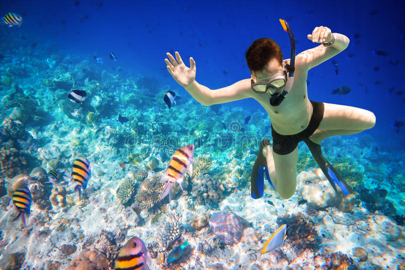 Arrecife de coral del Océano Índico de Snorkeler Maldivas foto de archivo libre de regalías