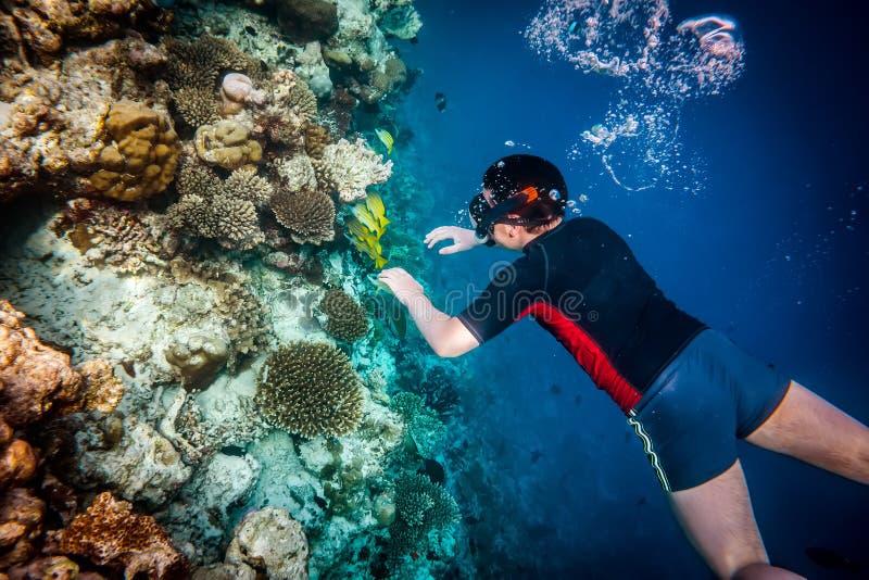 Arrecife de coral del Océano Índico de Snorkeler Maldivas fotografía de archivo