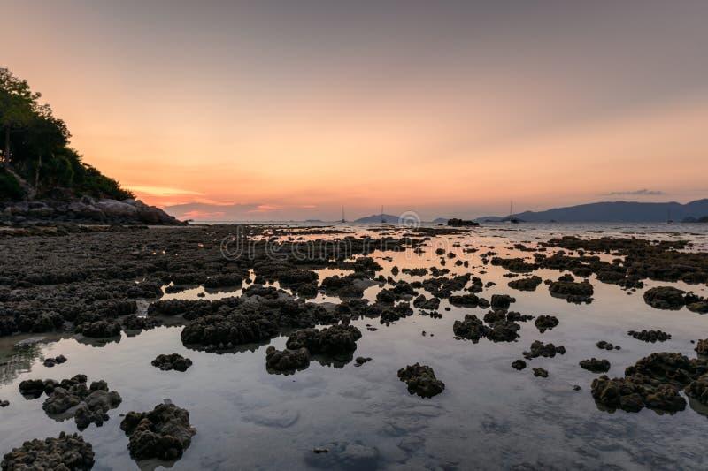 Arrecife de coral en fenómeno de la marea en la costa costa fotografía de archivo