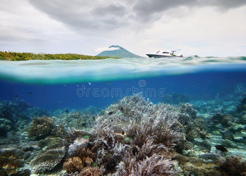 Arrecife de coral hermoso con muchos pescados cerca de la isla de Bunaken, Indone fotos de archivo libres de regalías
