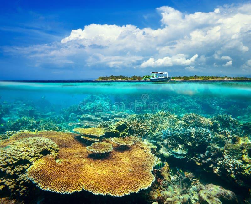 Arrecife de coral hermoso en el fondo Gili Meno Island imagenes de archivo