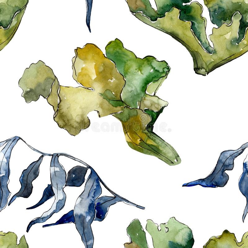 Arrecife de coral subacuático acuático verde y violeta de la naturaleza Sistema del ejemplo de la acuarela Modelo incons?til del  libre illustration