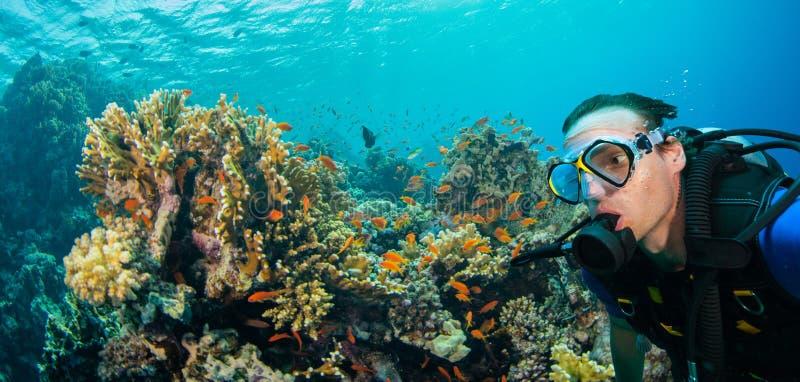 Arrecife de coral subacuático con la parte inferior de mar de exploración del buceador del hombre foto de archivo