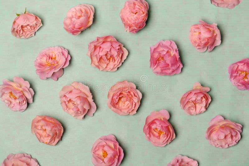 Arreglo de rosas rosadas fotos de archivo libres de regalías