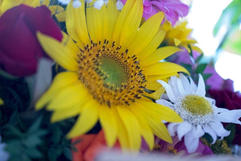 Arreglo floral en un ramo imagen de archivo libre de regalías