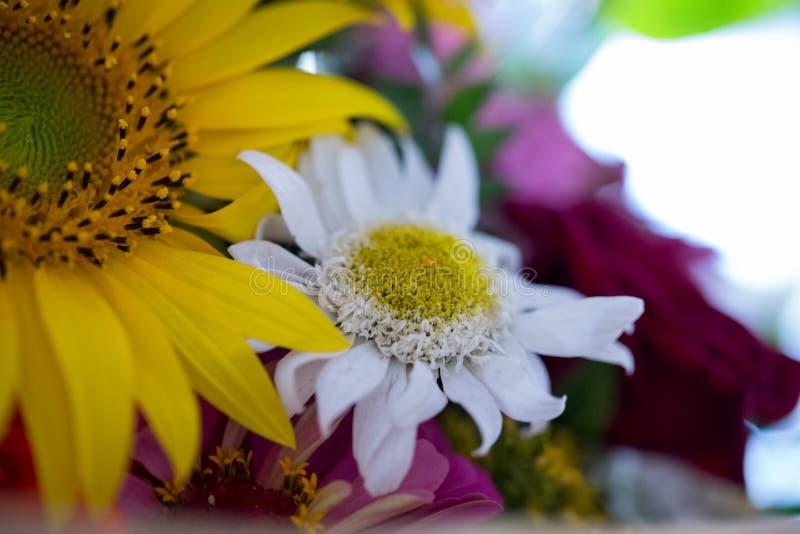 Arreglo floral en un ramo imagen de archivo