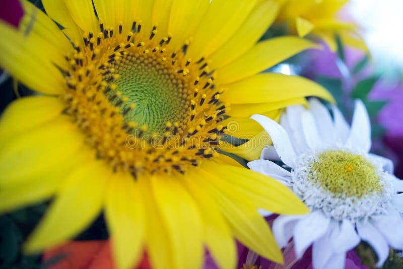 Arreglo floral en un ramo foto de archivo