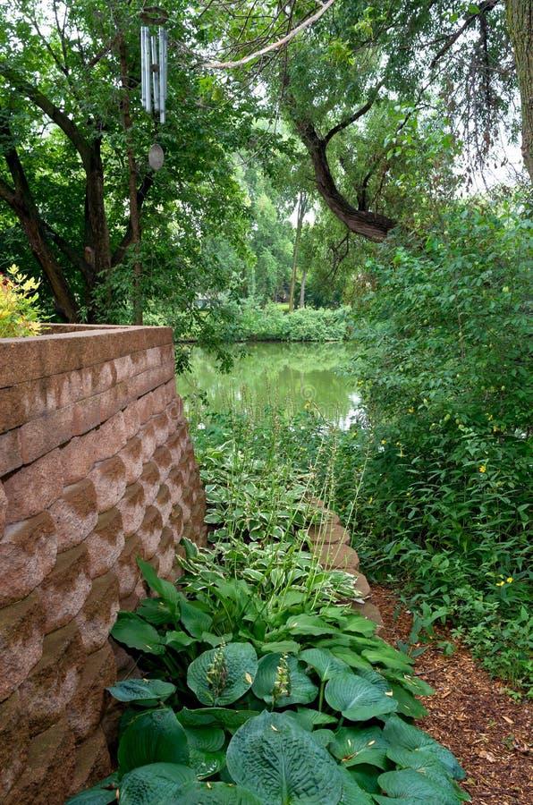 Arrière-cour aménageant les usines et l'étang en parc photos stock