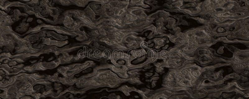 Arrière-plan de texture racinaire de la macro fractale image libre de droits