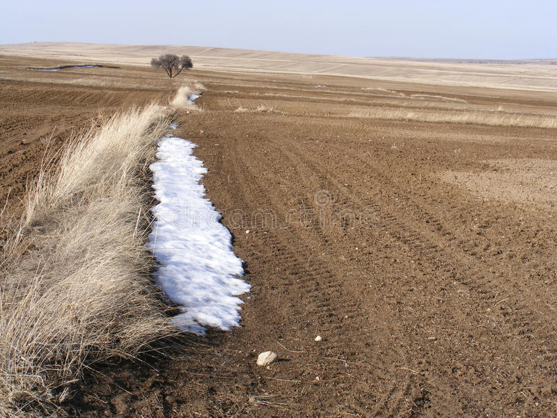 The arrival of spring in the continental climate, snow and cultivated fields stock photography