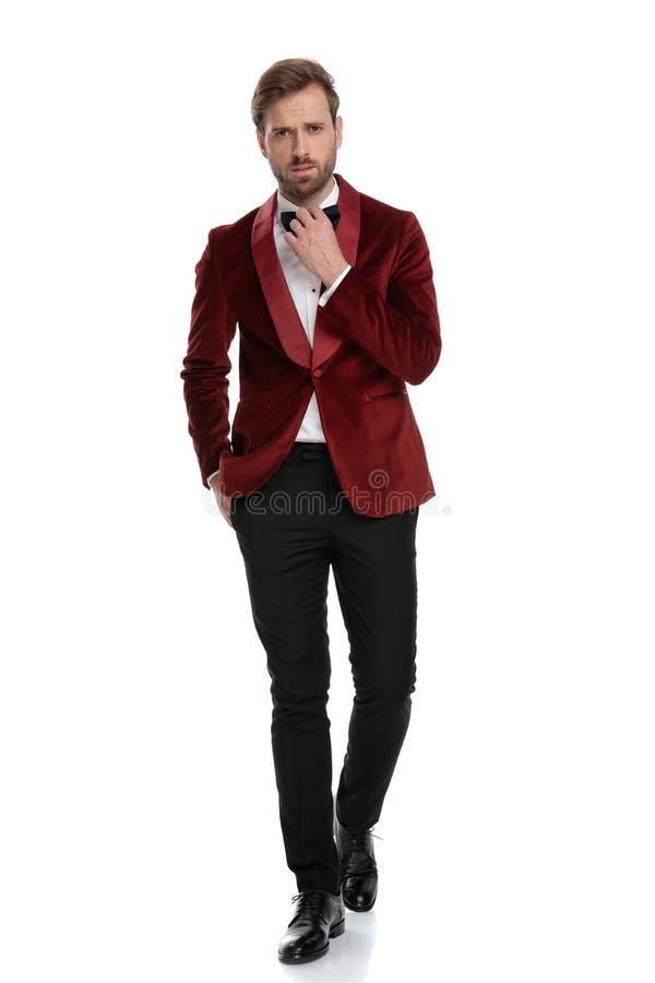 Arrogant fashion model wearing red velvet tuxedo stock photography