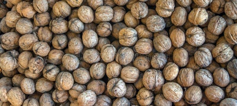 Arrondissement naturel de la texture de fond de noix Résumé du motif de la feuille de noix arrière-plan Arêtes floues Cadre na images libres de droits