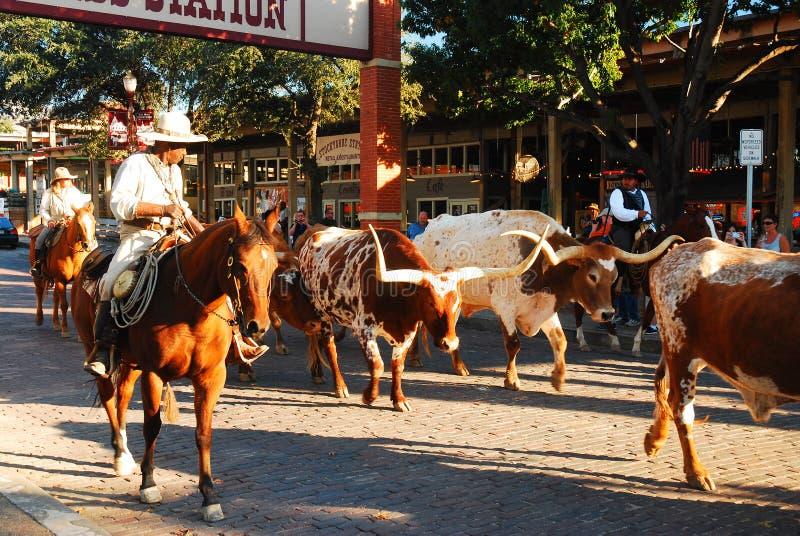 Arrondissez à Fort Worth photographie stock libre de droits