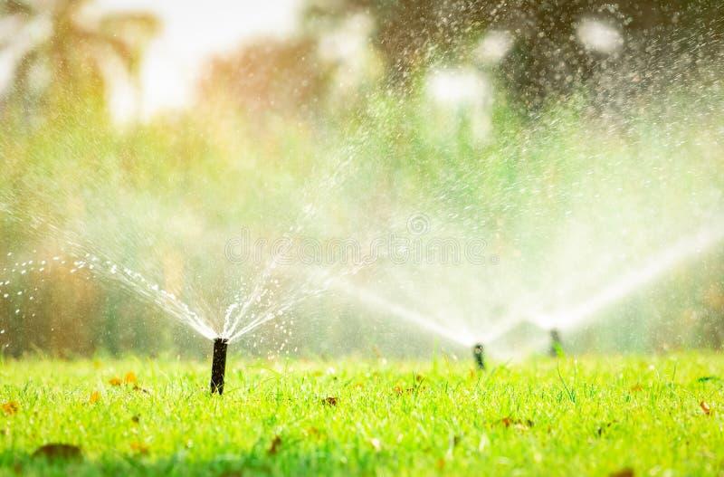 Arroseuse automatique de pelouse arrosant l'herbe verte Arroseuse avec le système automatique Pelouse de arrosage de système d'ir images libres de droits