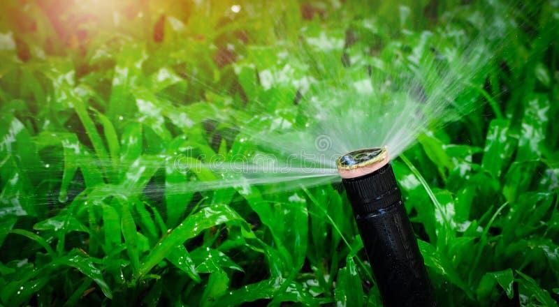 Arroseuse automatique de pelouse arrosant l'herbe verte Arroseuse avec le système automatique Pelouse de arrosage de système d'ir image libre de droits