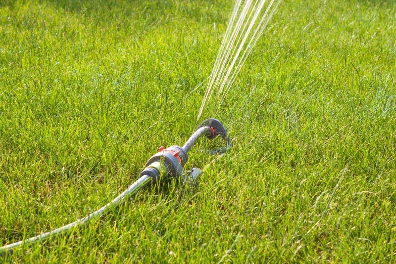 Arroseuse de jardin le jour ensoleillé photo stock