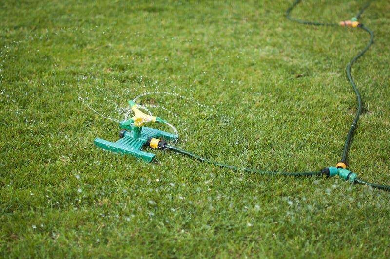 Arroseuse de pelouse au-dessus d'herbe verte photo libre de droits