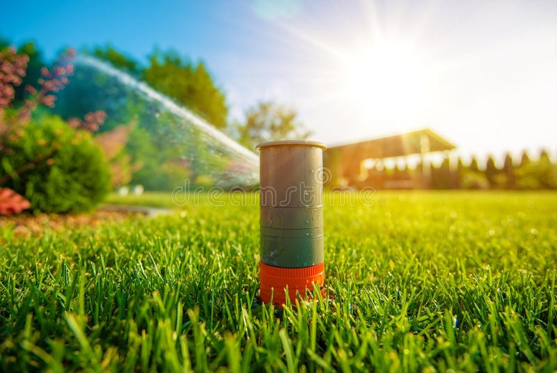 Arroseuse de pelouse dans l'action photos libres de droits