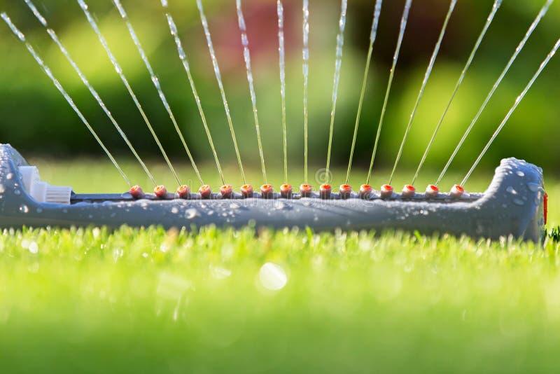 Arroseuse de pelouse stérilisant l'eau au-dessus de l'herbe verte photographie stock libre de droits