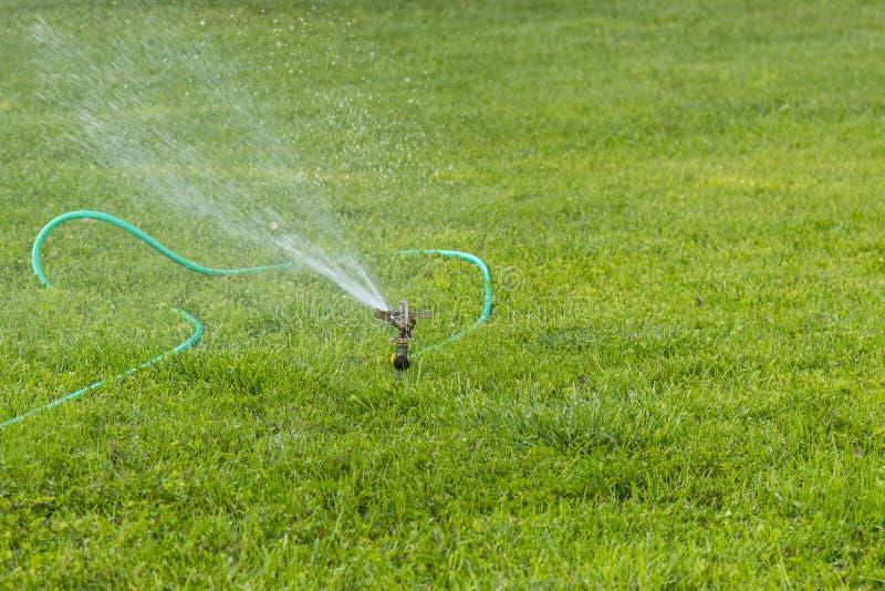 Arroseuse de pelouse stérilisant l'eau au-dessus de l'herbe verte Système d'irrigation Pelouses de arrosage automatiques Jardinag photographie stock