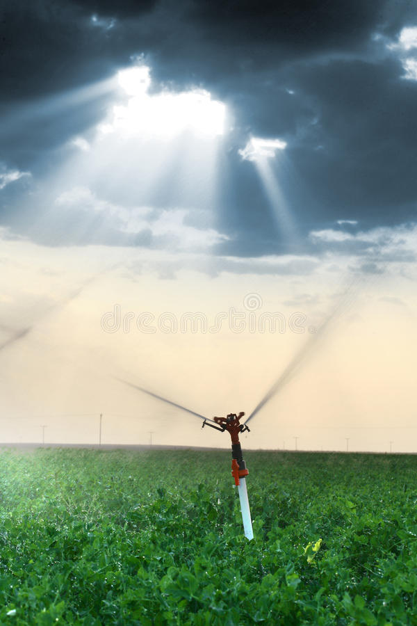 Arroseuses d'irrigation images stock