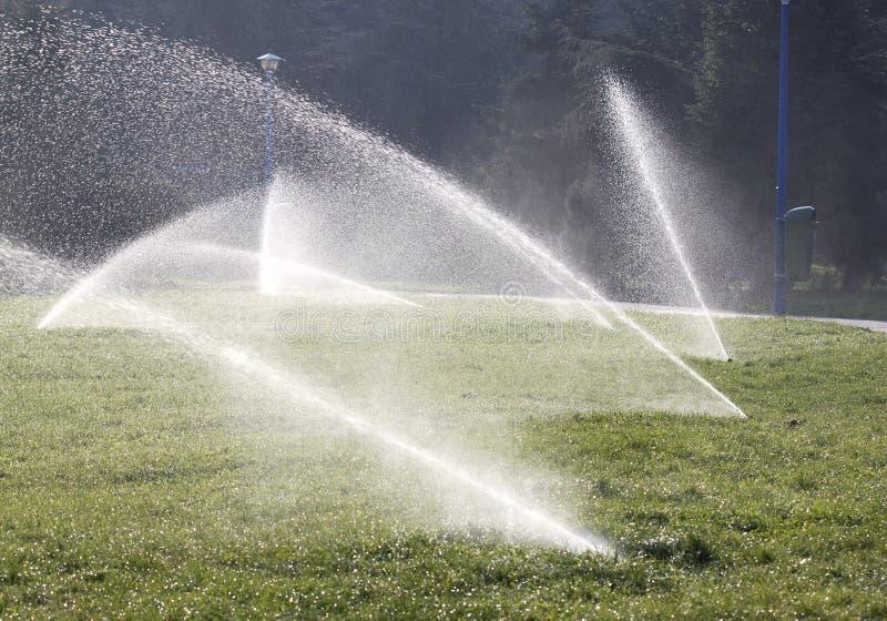 Arroseuses de l'eau photo libre de droits