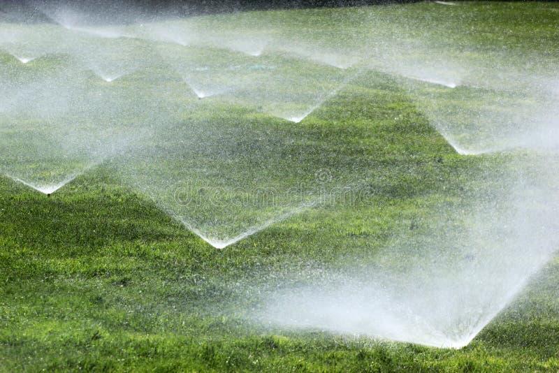 Arroseuses sur une pelouse verte photographie stock libre de droits