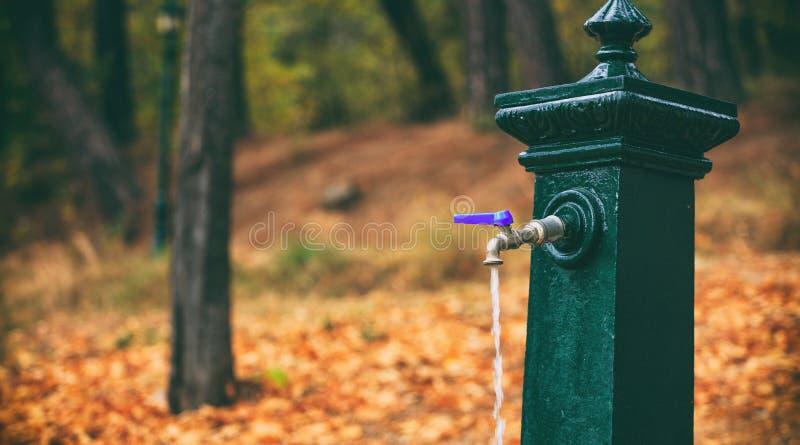 Arrosez découler d'un robinet dans un parc à l'hiver photographie stock libre de droits