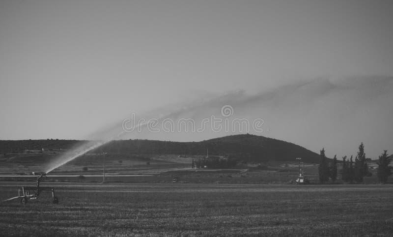 Arrosez l'installation d'arroseuse dans le domaine avec le ciel bleu sur le fond Système d'irrigation dans l'action sur le champ  images libres de droits