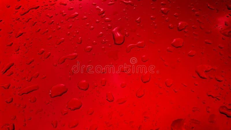 Arrosez le fond de baisses sur la surface brillante rouge, gouttelettes de pluie photographie stock libre de droits